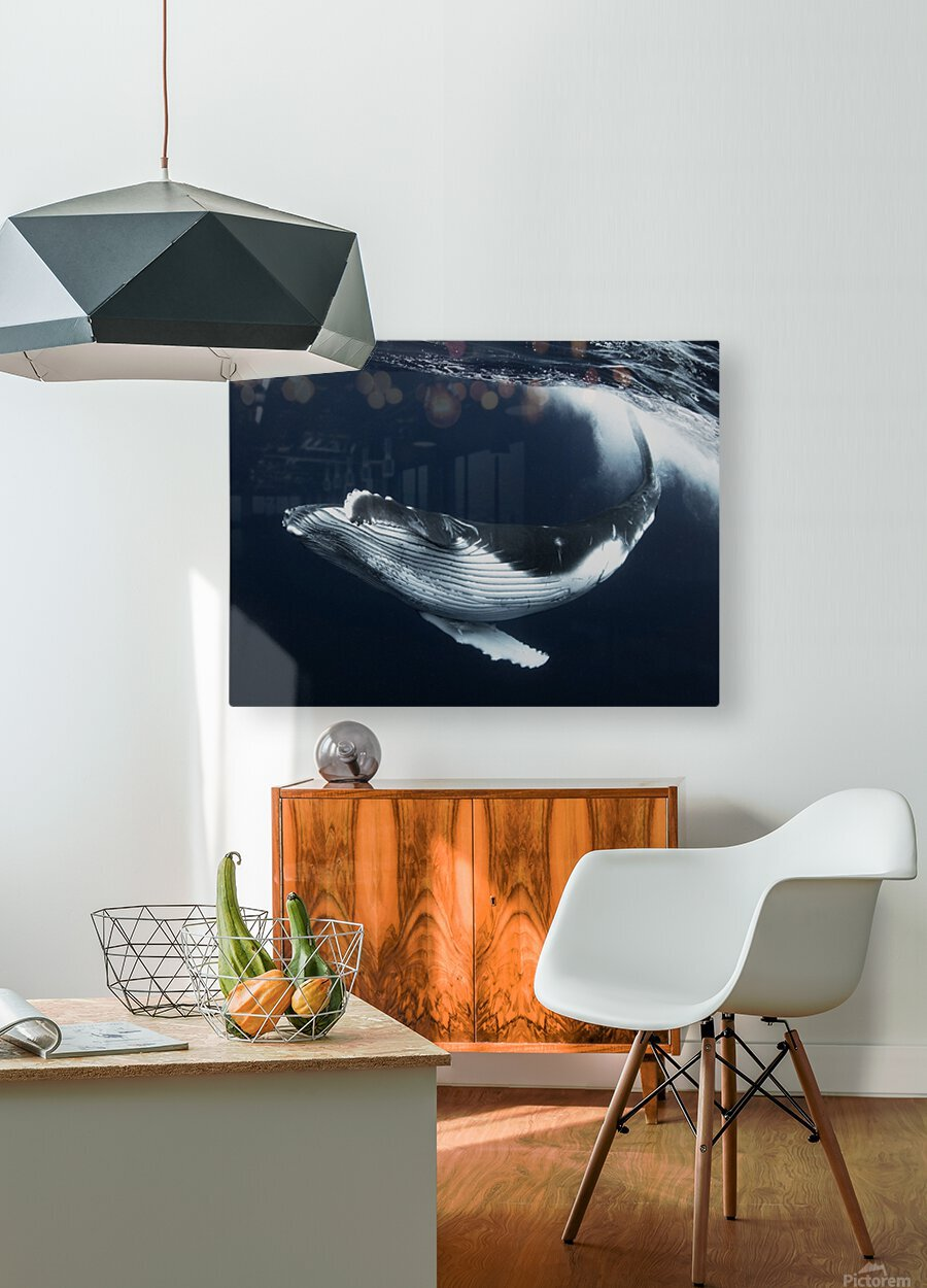 Beautiful turn  HD Metal print with Floating Frame on Back