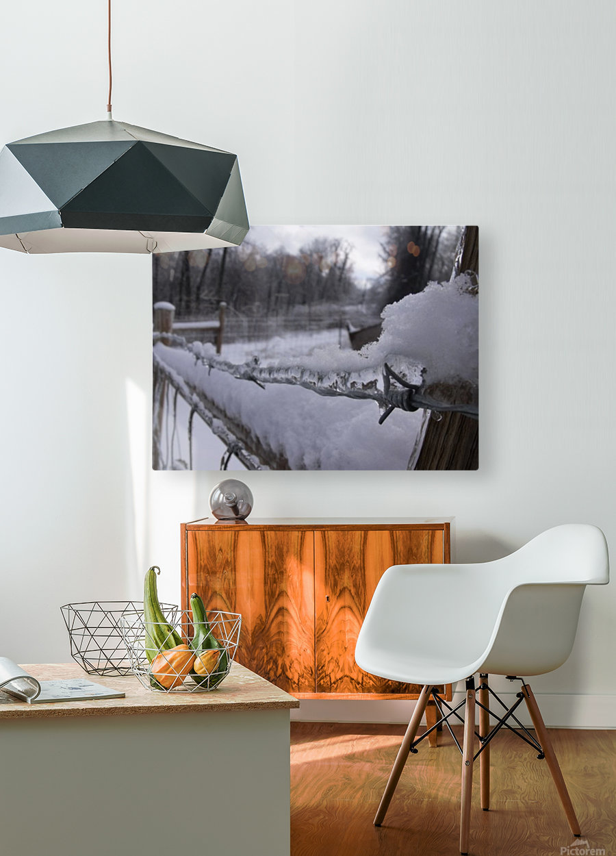 16864_738586360532_4294197_n  HD Metal print with Floating Frame on Back