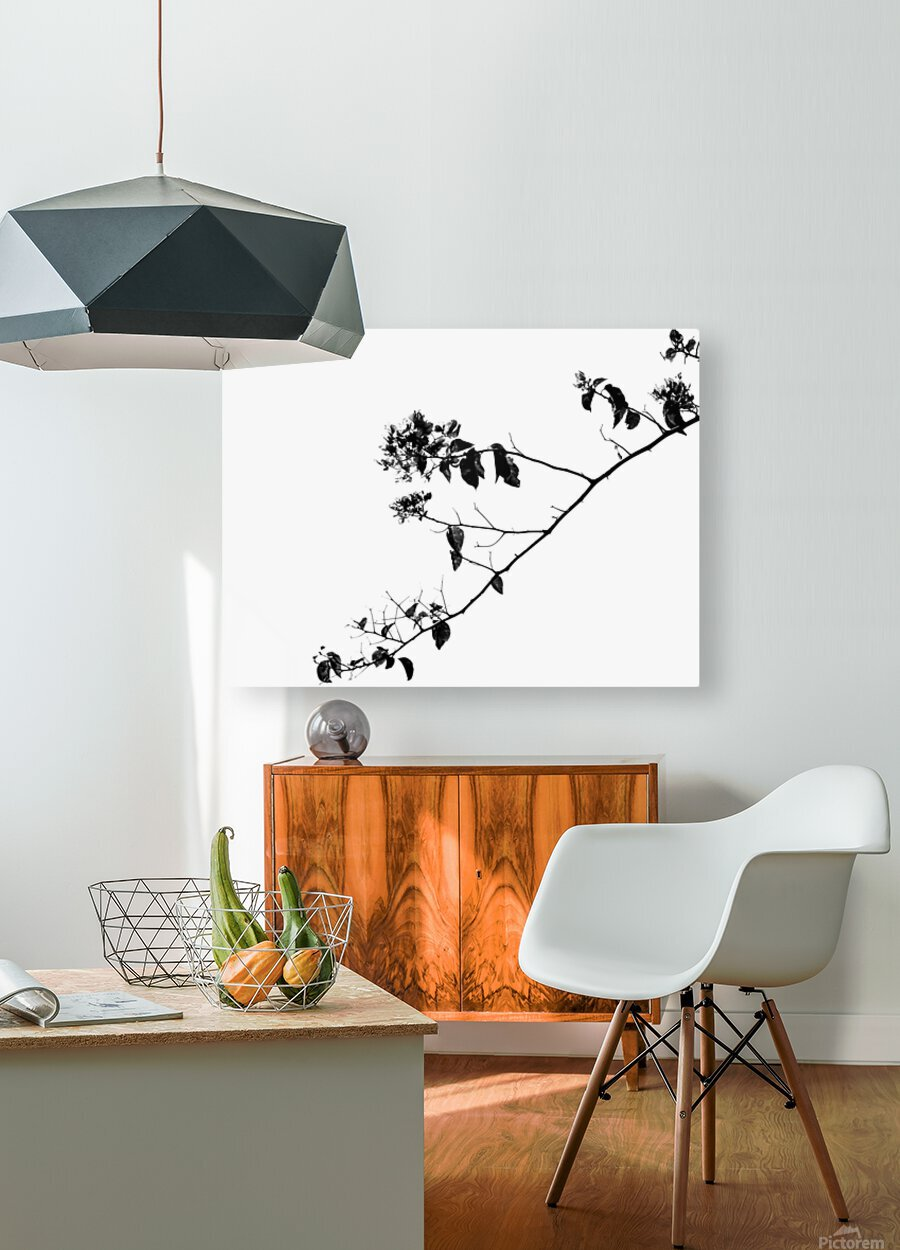 Tree Branch II  HD Metal print with Floating Frame on Back