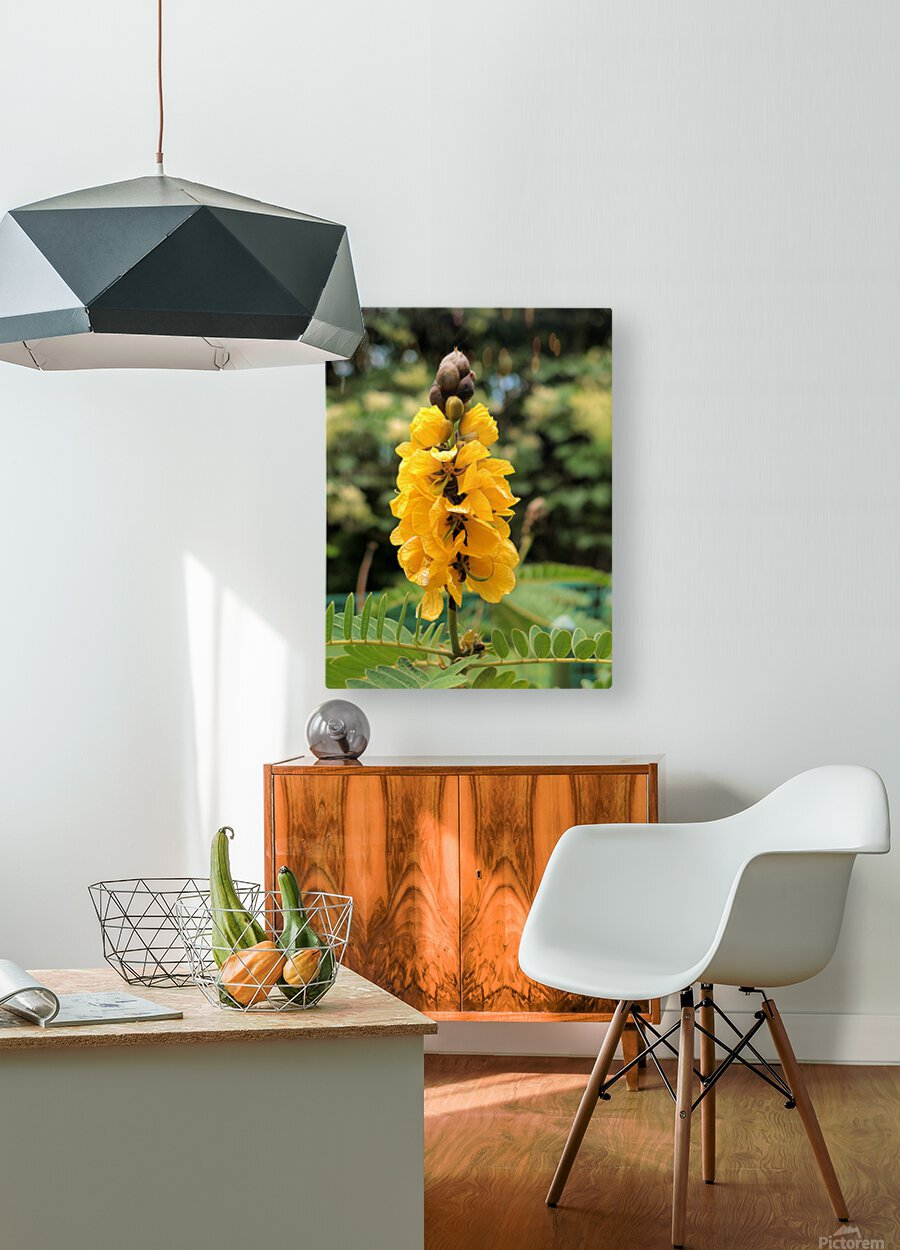 Yellow  HD Metal print with Floating Frame on Back