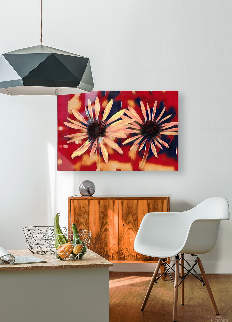 Two Coneflowers  HD Metal print with Floating Frame on Back