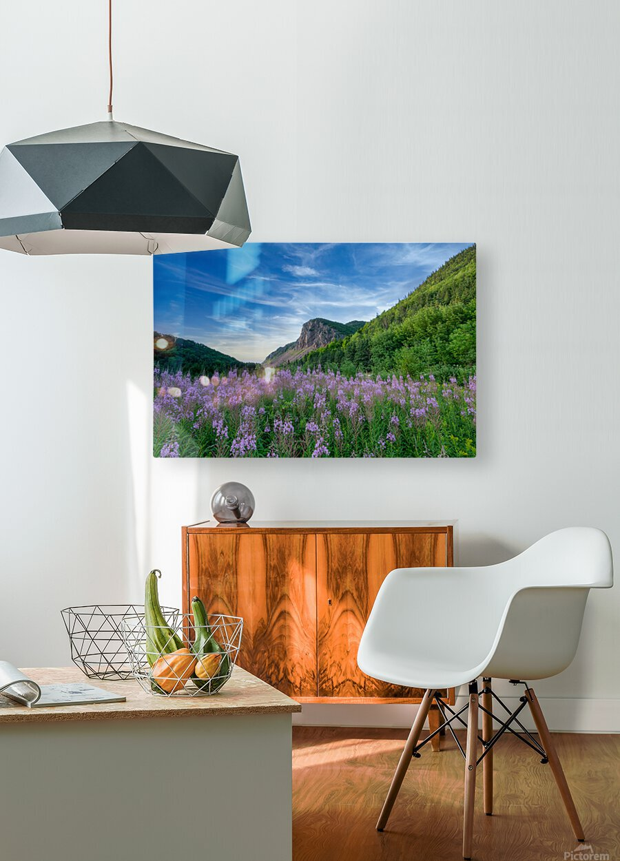 Fireweed at La Grand Falaise  HD Metal print with Floating Frame on Back