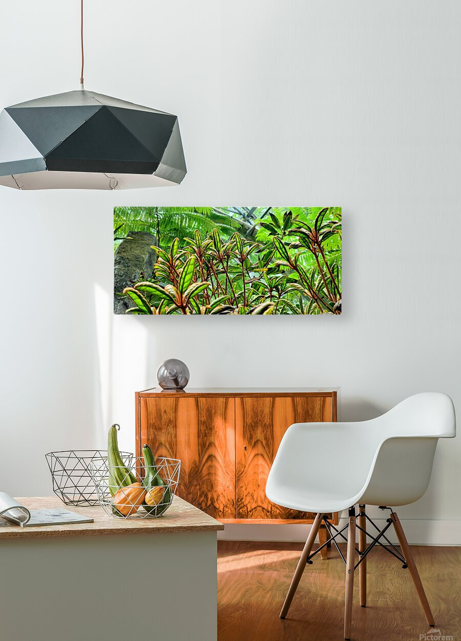 The Greenhouse  HD Metal print with Floating Frame on Back