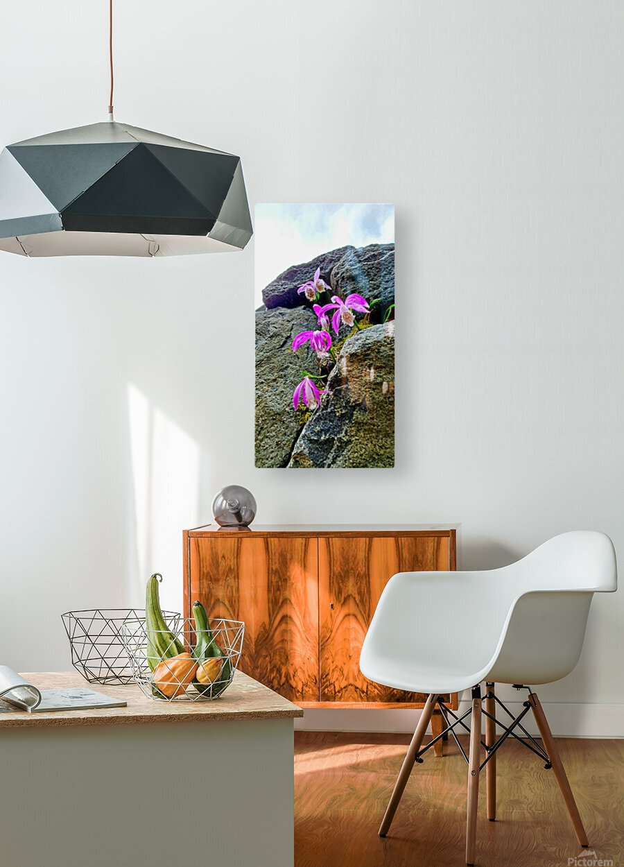Unexpectedly  HD Metal print with Floating Frame on Back