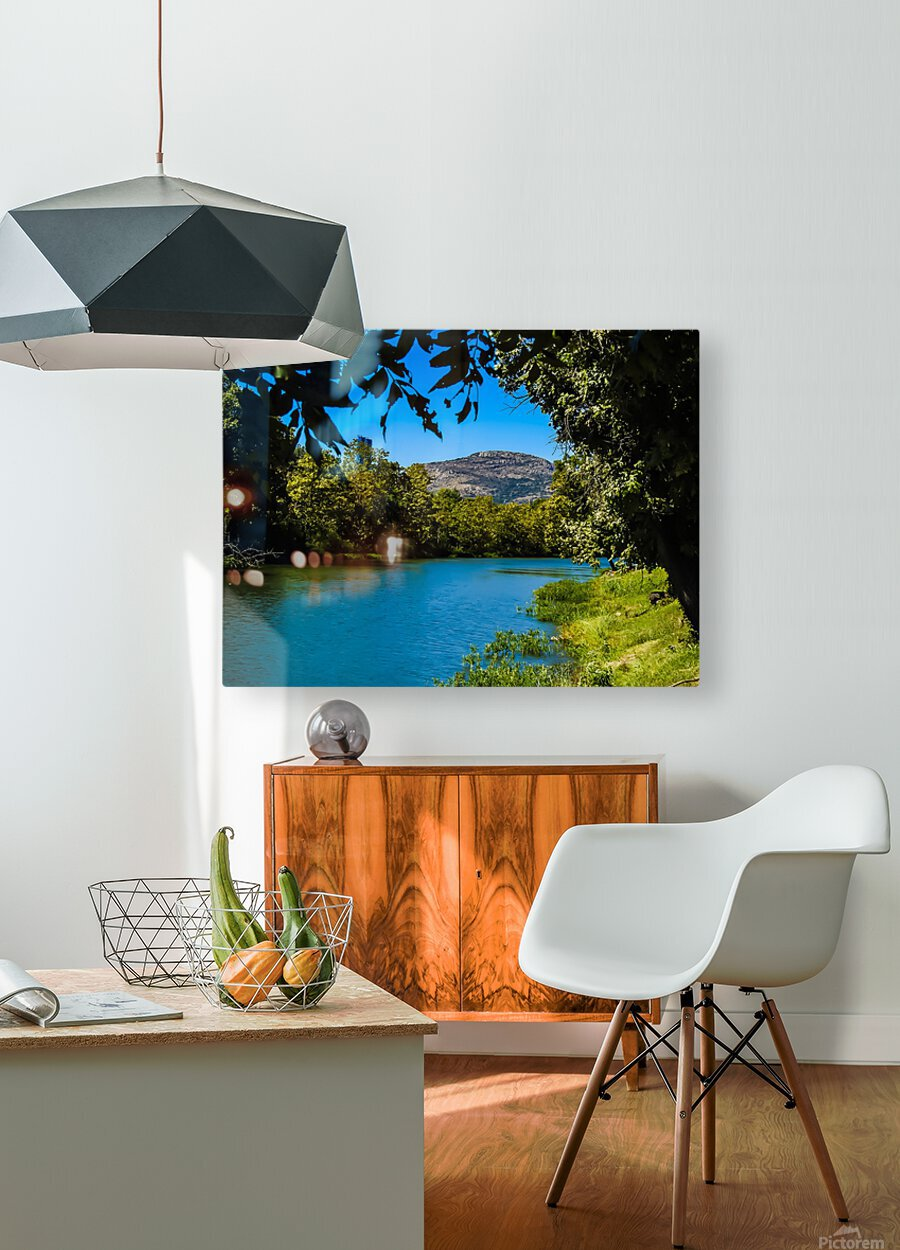 Through the trees  HD Metal print with Floating Frame on Back