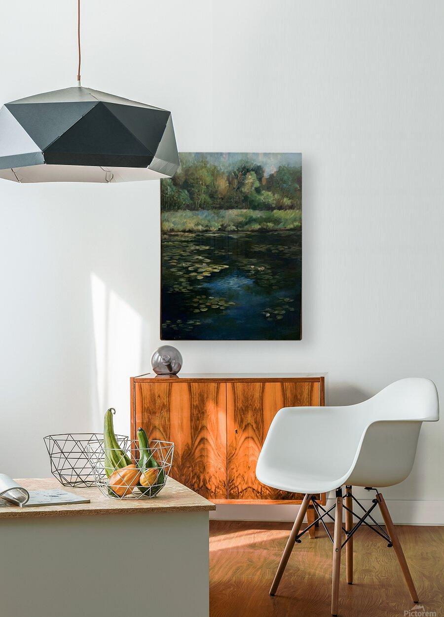 Calhoun pond  HD Metal print with Floating Frame on Back