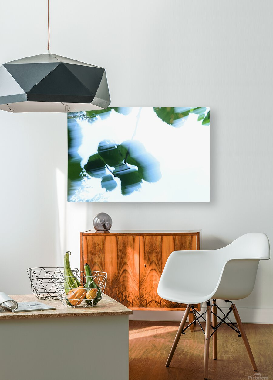 swift  HD Metal print with Floating Frame on Back