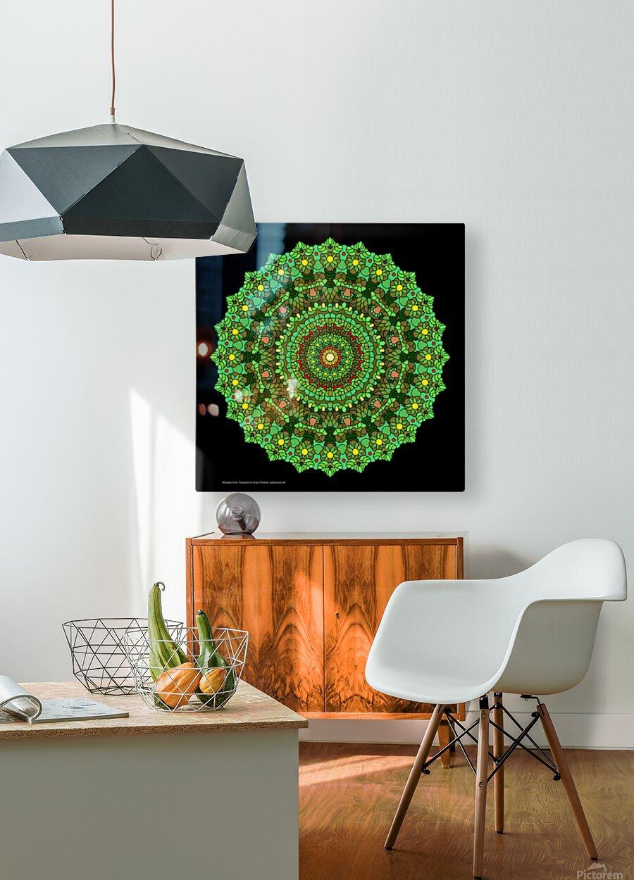 Mandala 2016  HD Metal print with Floating Frame on Back