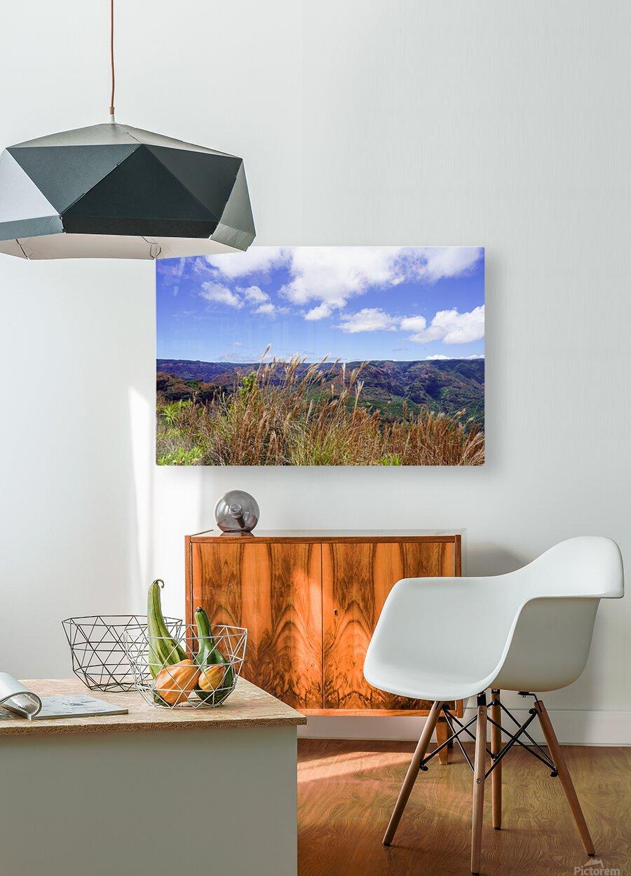 Beautiful View in Waimea Canyon on the Island of Kauai  HD Metal print with Floating Frame on Back