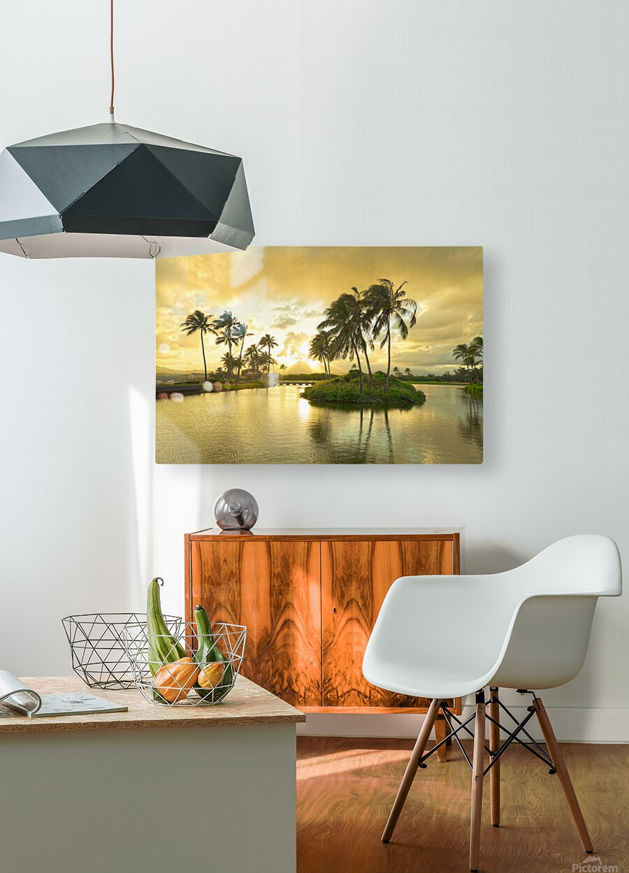 Shadows and Light as the Sun Sets in Kauai 2 of 2  HD Metal print with Floating Frame on Back