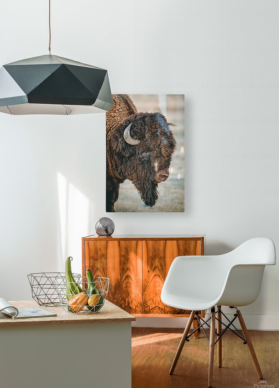 Cut the Bull  HD Metal print with Floating Frame on Back