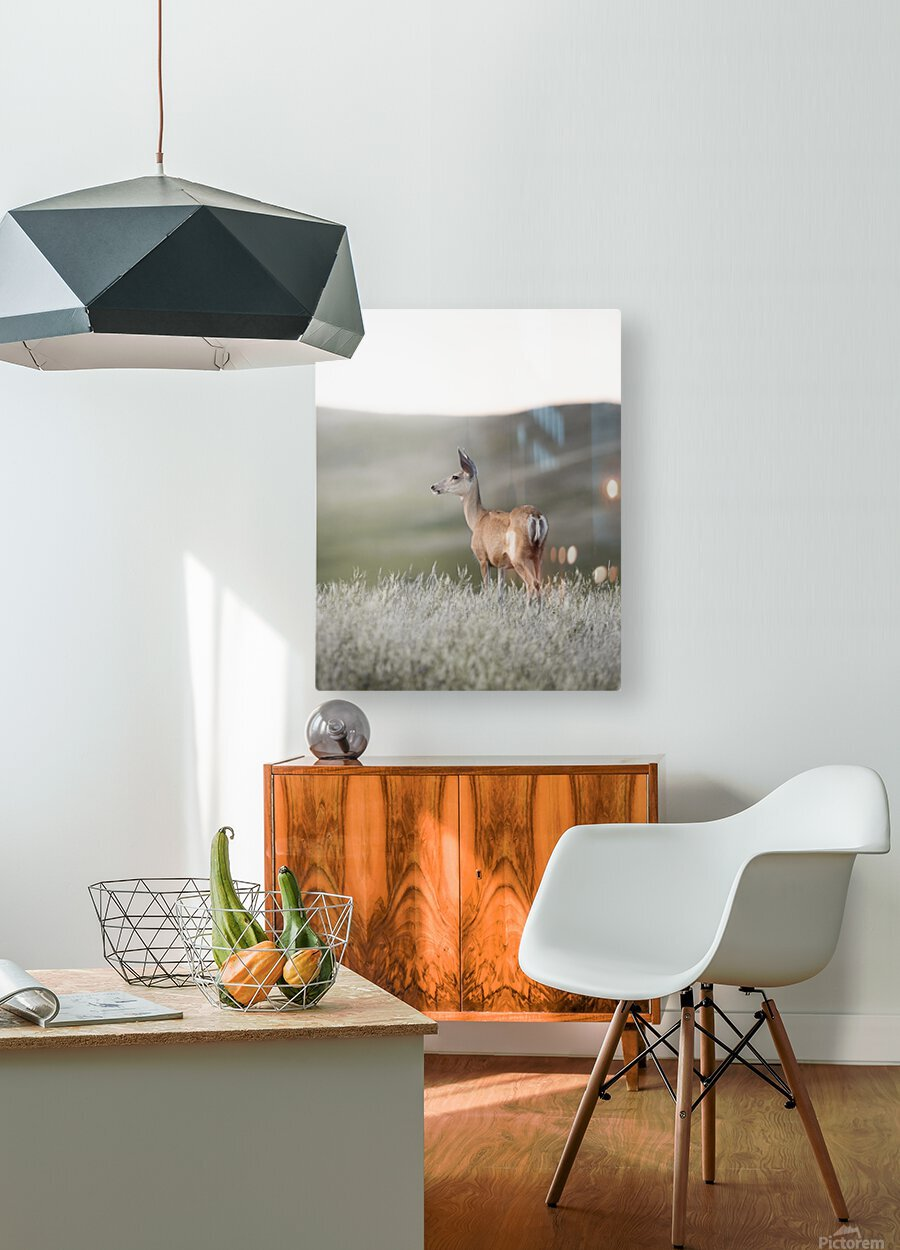 Happy Hour on the Prairie  HD Metal print with Floating Frame on Back