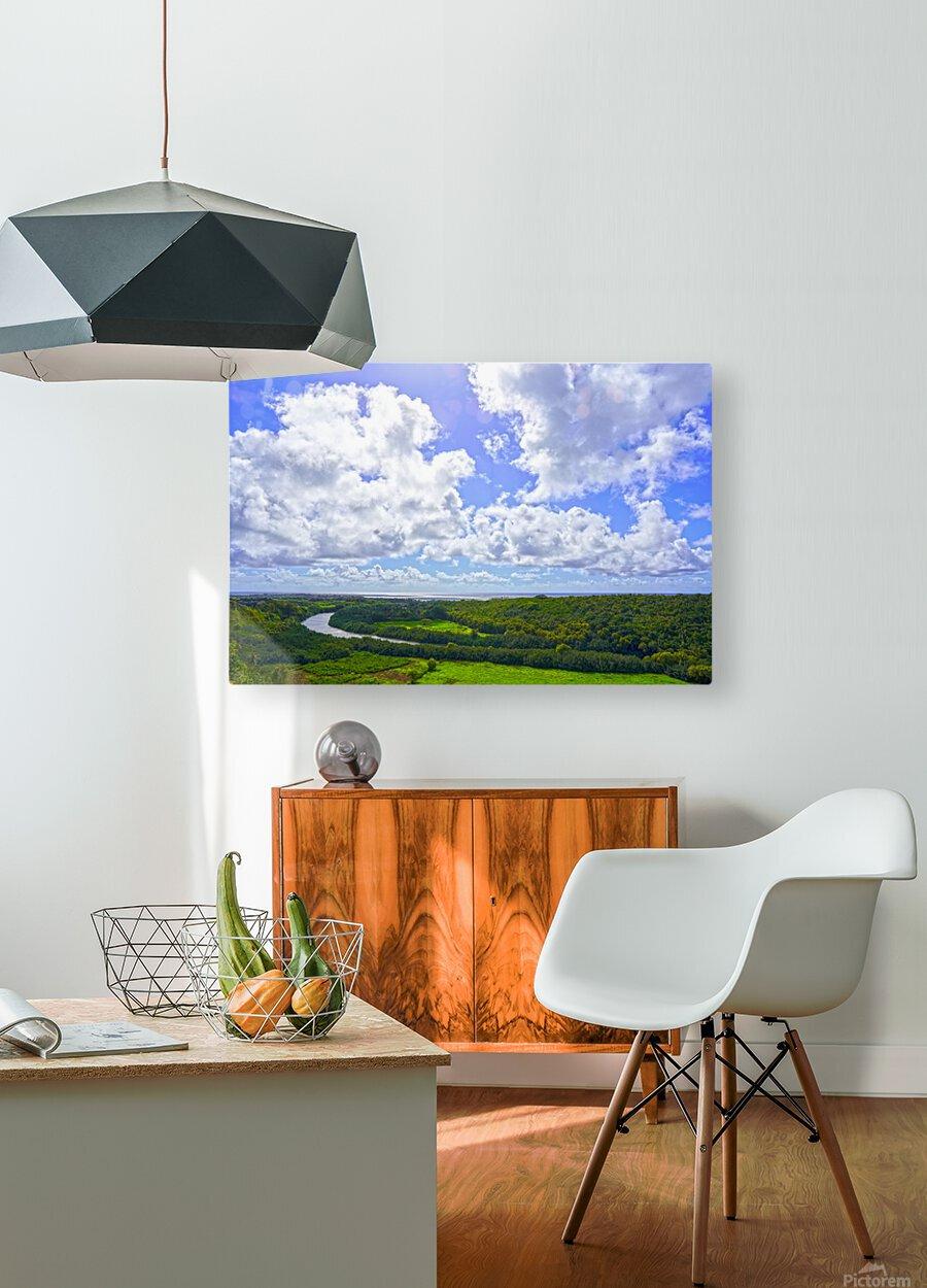 On the Wailua Heritage Trail   Wailua River to Wailua Beach 1 of 2  HD Metal print with Floating Frame on Back