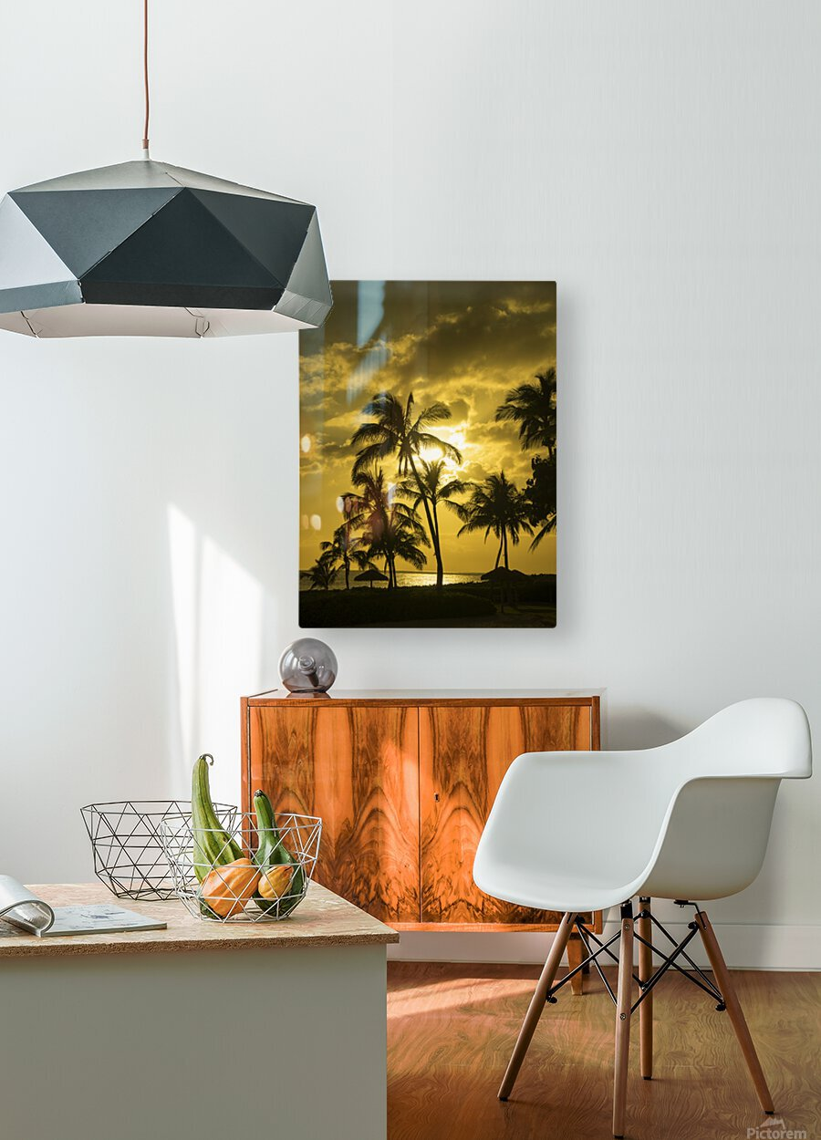Palms and Hulu Thatched Tiki Umbrellas in the Golden Light of Sunset  HD Metal print with Floating Frame on Back
