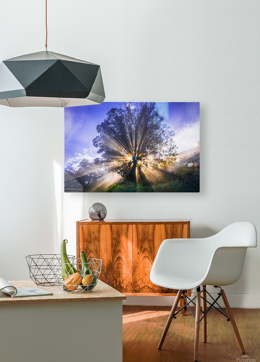 Rays of Light  HD Metal print with Floating Frame on Back
