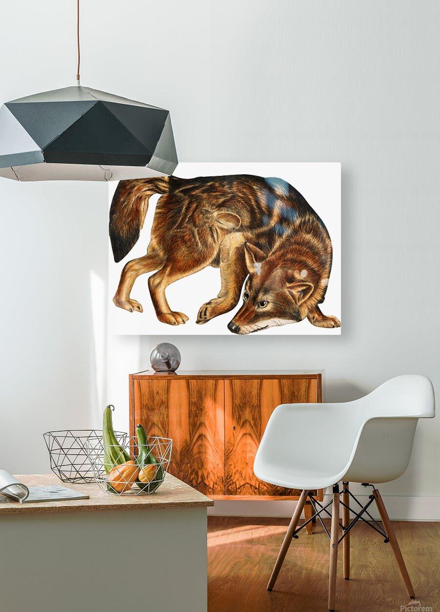 Fox Print | British Wildlife Art | A3 A4 A5 | Fox Lover Gift | Fox Illustration | Fox Painting | Fox Nursery Wall Art | British Animal Print  HD Metal print with Floating Frame on Back