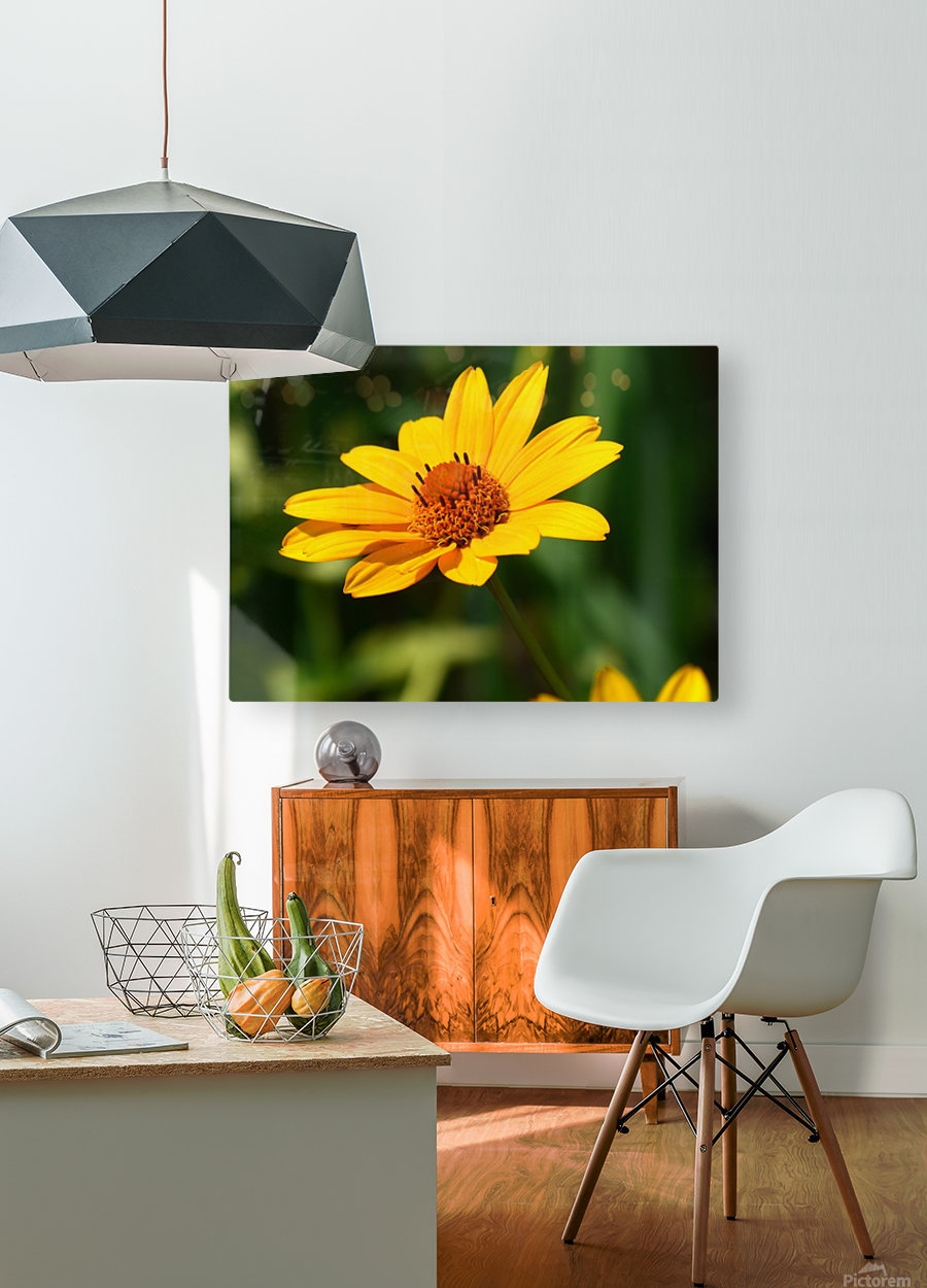 Sunny Side  HD Metal print with Floating Frame on Back