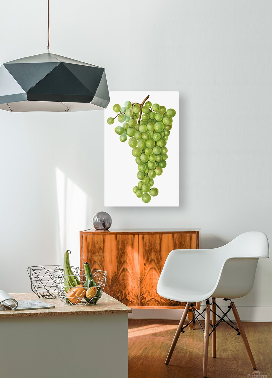 Green Grapes Wall Decor Vintage Botanical Poster Kitchen Art  HD Metal print with Floating Frame on Back