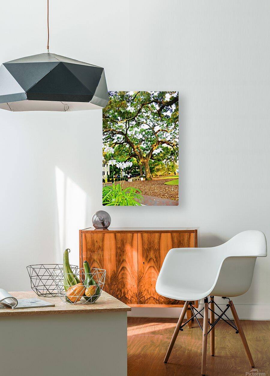Savannah  HD Metal print with Floating Frame on Back