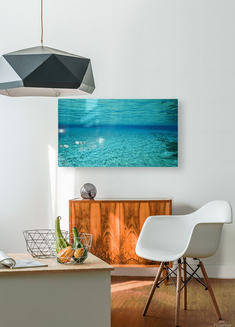 Clarity  HD Metal print with Floating Frame on Back