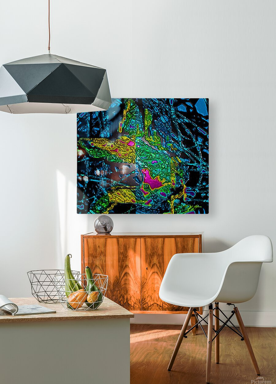 Tangled Transformation 6  HD Metal print with Floating Frame on Back