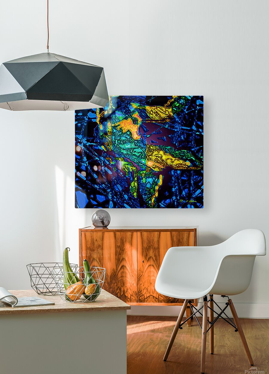 Tangled Transformation 3  HD Metal print with Floating Frame on Back