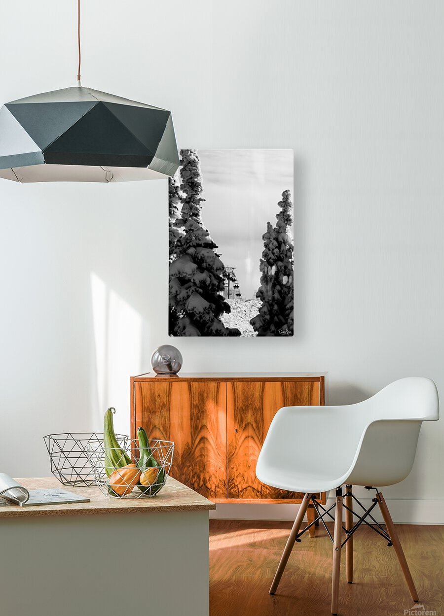 Silver Sliver  HD Metal print with Floating Frame on Back