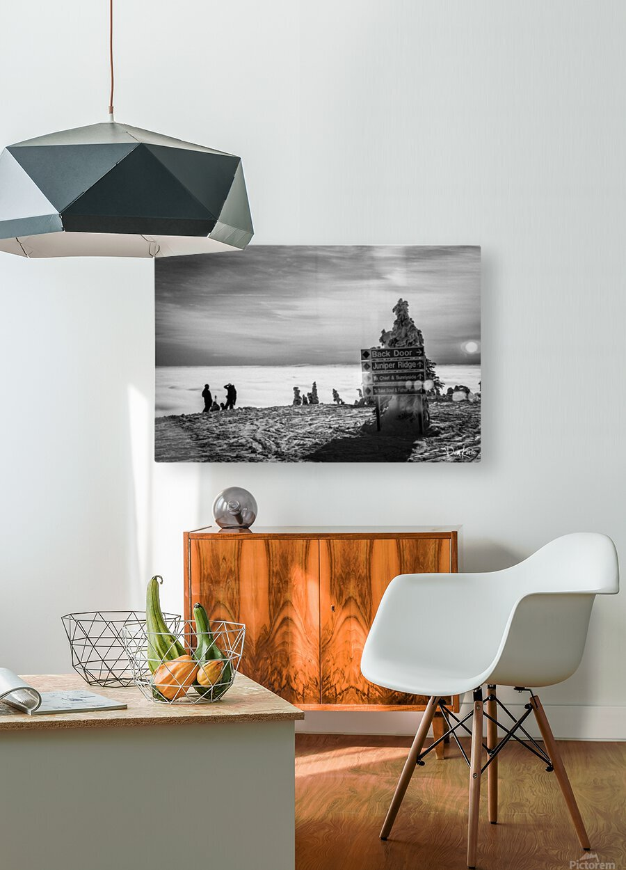 Contemplation   HD Metal print with Floating Frame on Back
