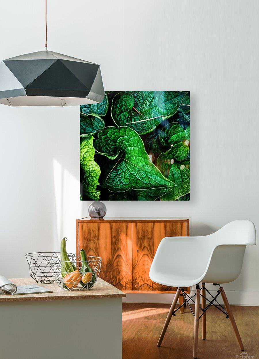 Garden Leaves  HD Metal print with Floating Frame on Back