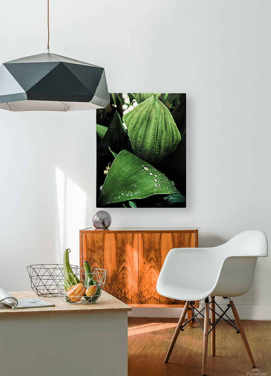 Dainty Drops  HD Metal print with Floating Frame on Back