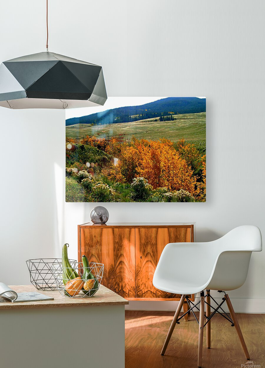 LS028  HD Metal print with Floating Frame on Back