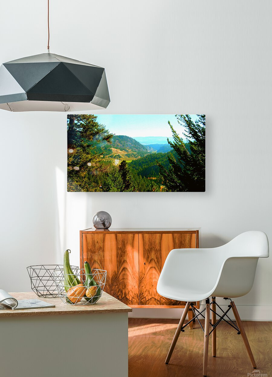 LS027  HD Metal print with Floating Frame on Back