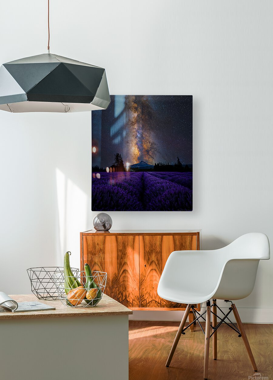 Lavender Valley  HD Metal print with Floating Frame on Back