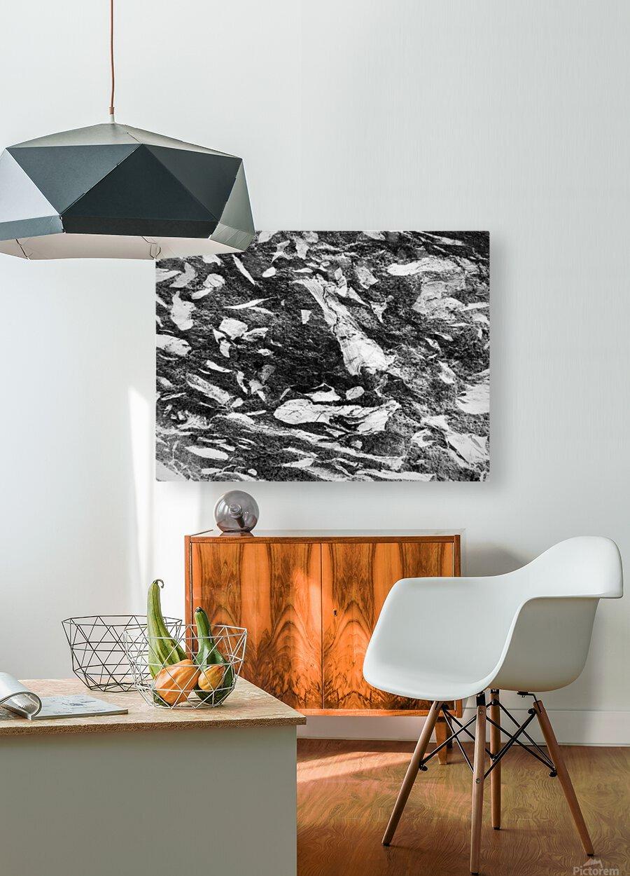 RA016  HD Metal print with Floating Frame on Back