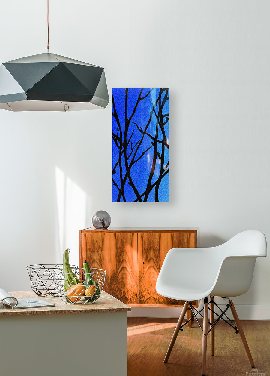 Ultramarine Forest Winter Blues I  HD Metal print with Floating Frame on Back