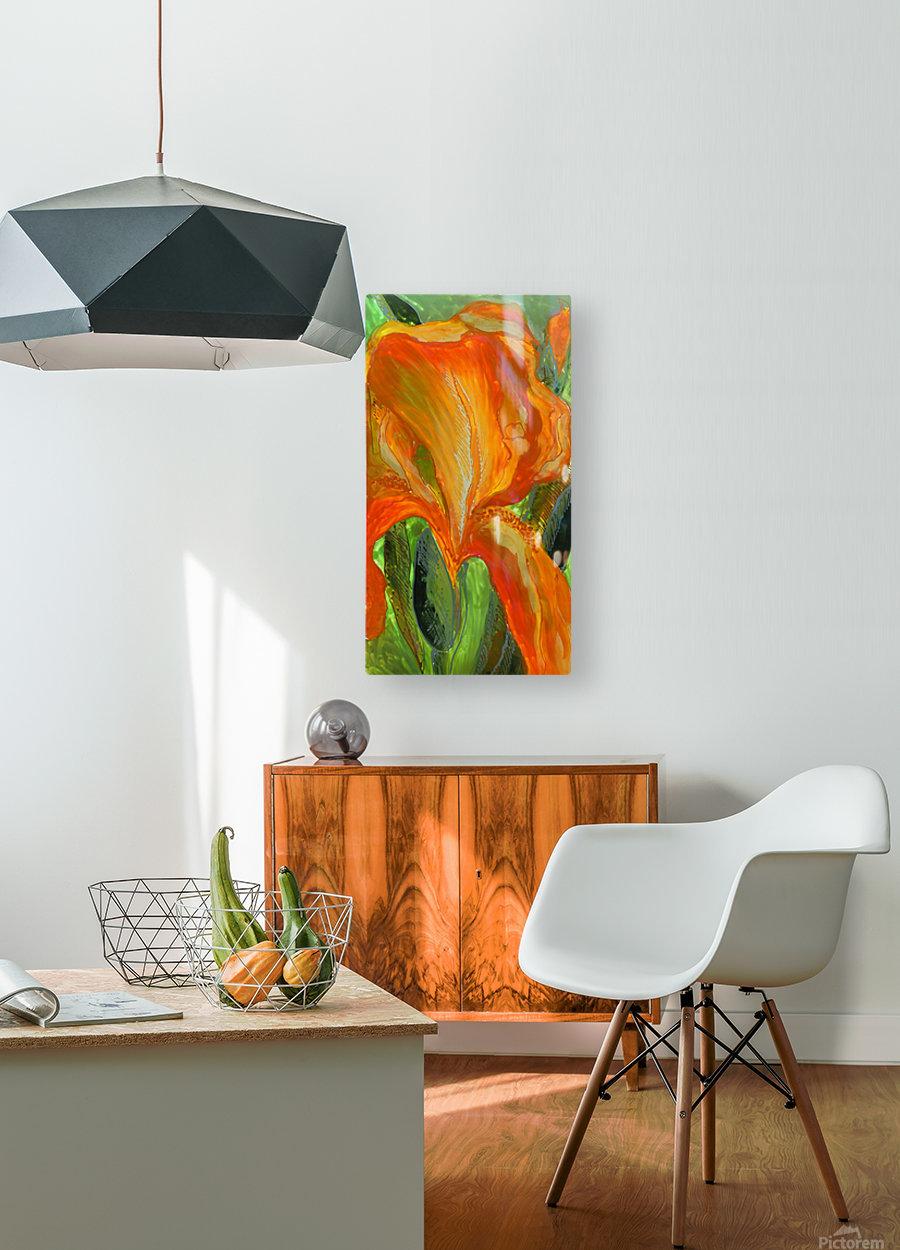 Polyptic with irises 2 by Vali Irina Ciobanu  HD Metal print with Floating Frame on Back