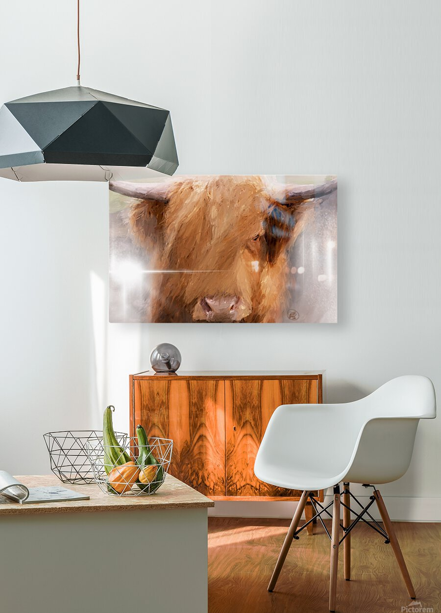 Highland Harry  HD Metal print with Floating Frame on Back