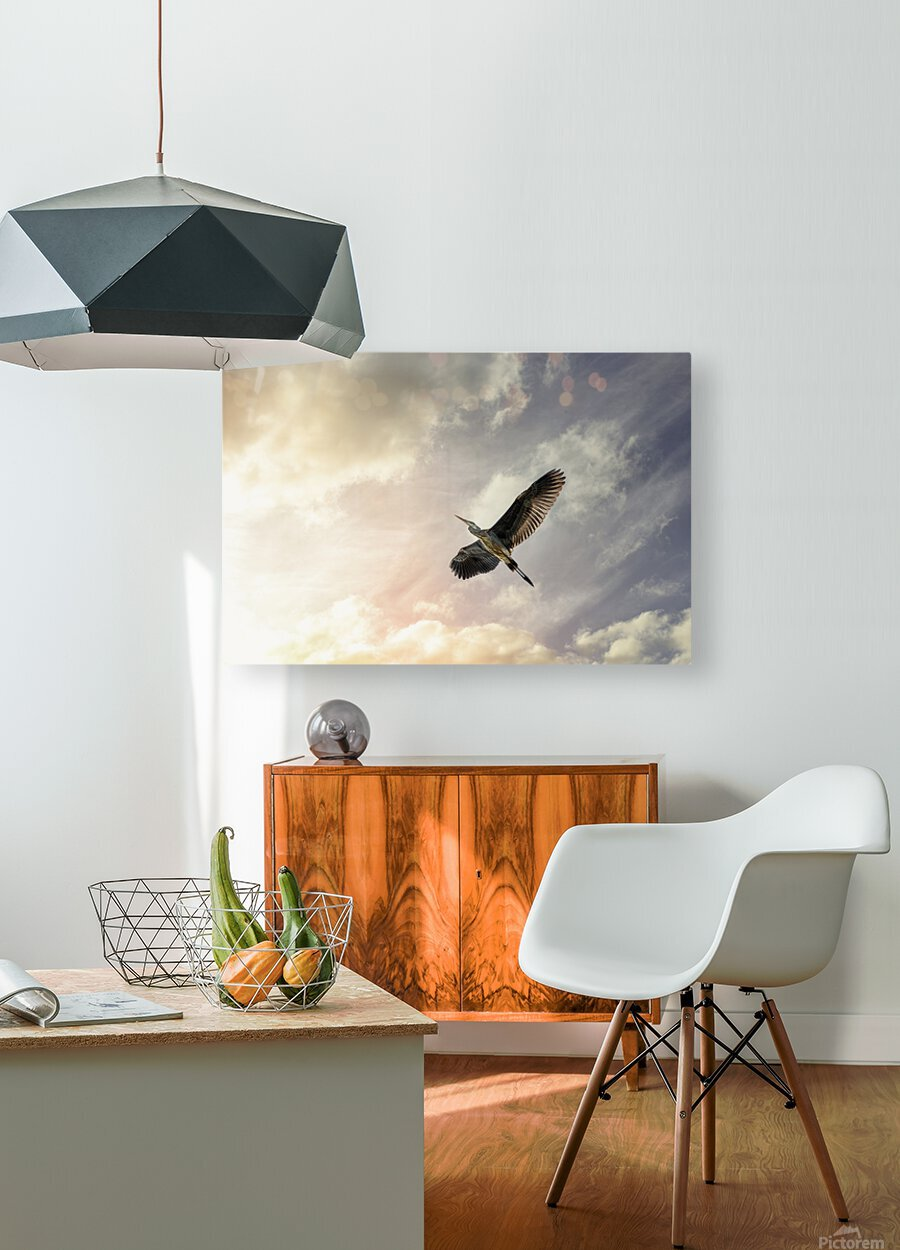 Heron Sunrise  HD Metal print with Floating Frame on Back