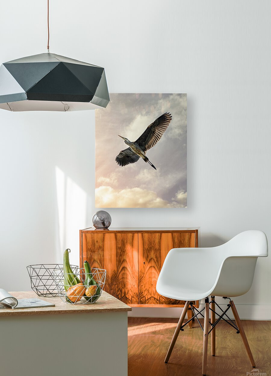 Flight Of The Heron  HD Metal print with Floating Frame on Back