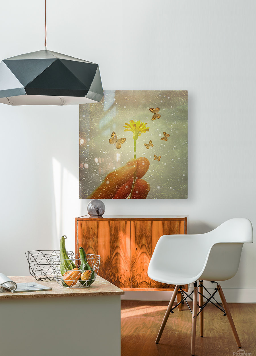 Butterflies Charmer  HD Metal print with Floating Frame on Back