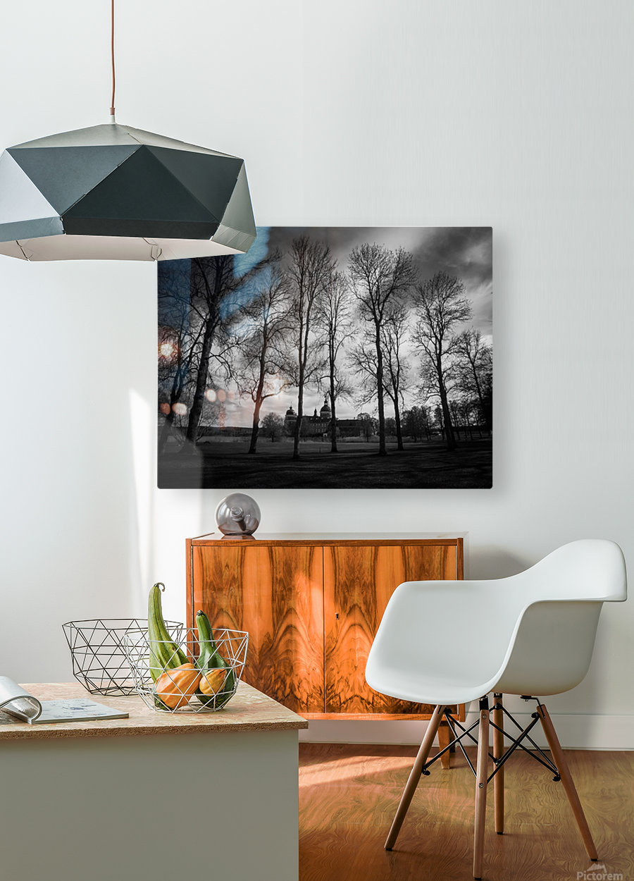Gripsholm   HD Metal print with Floating Frame on Back
