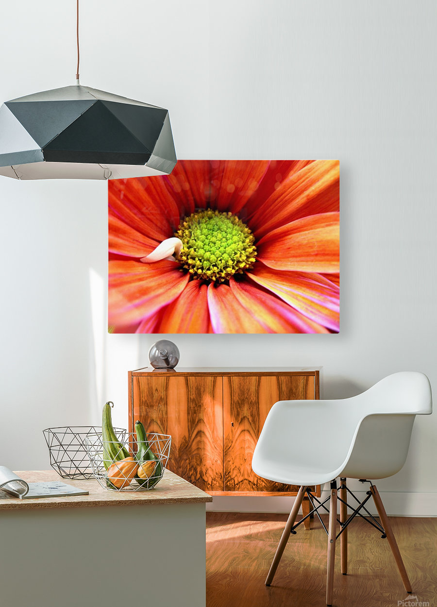 Colorful  HD Metal print with Floating Frame on Back