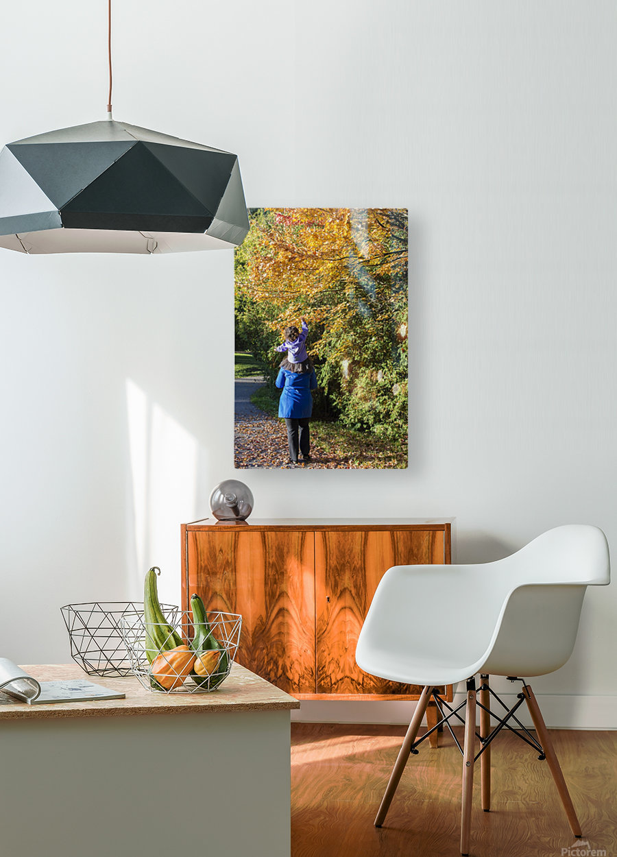 Getting a Boost  HD Metal print with Floating Frame on Back