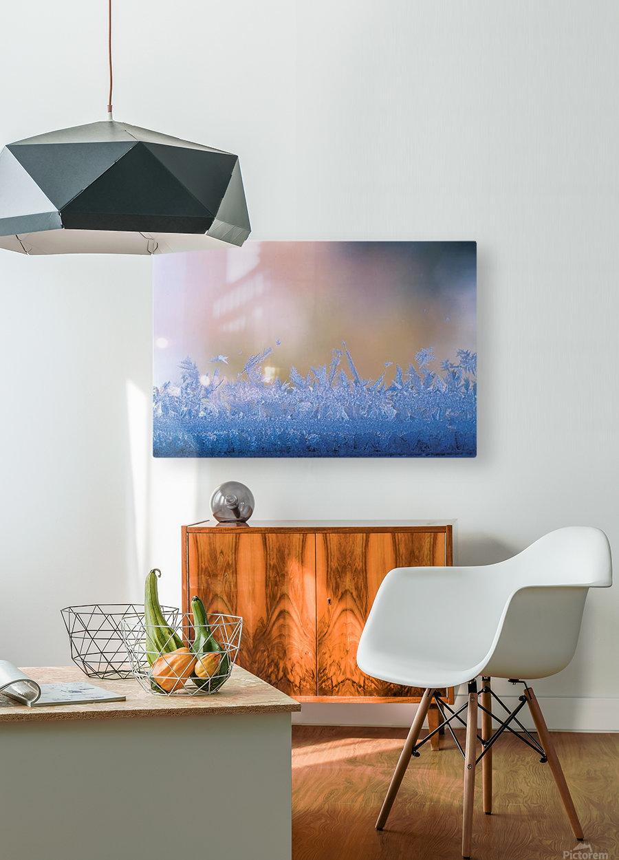 landscape_2_0126  HD Metal print with Floating Frame on Back