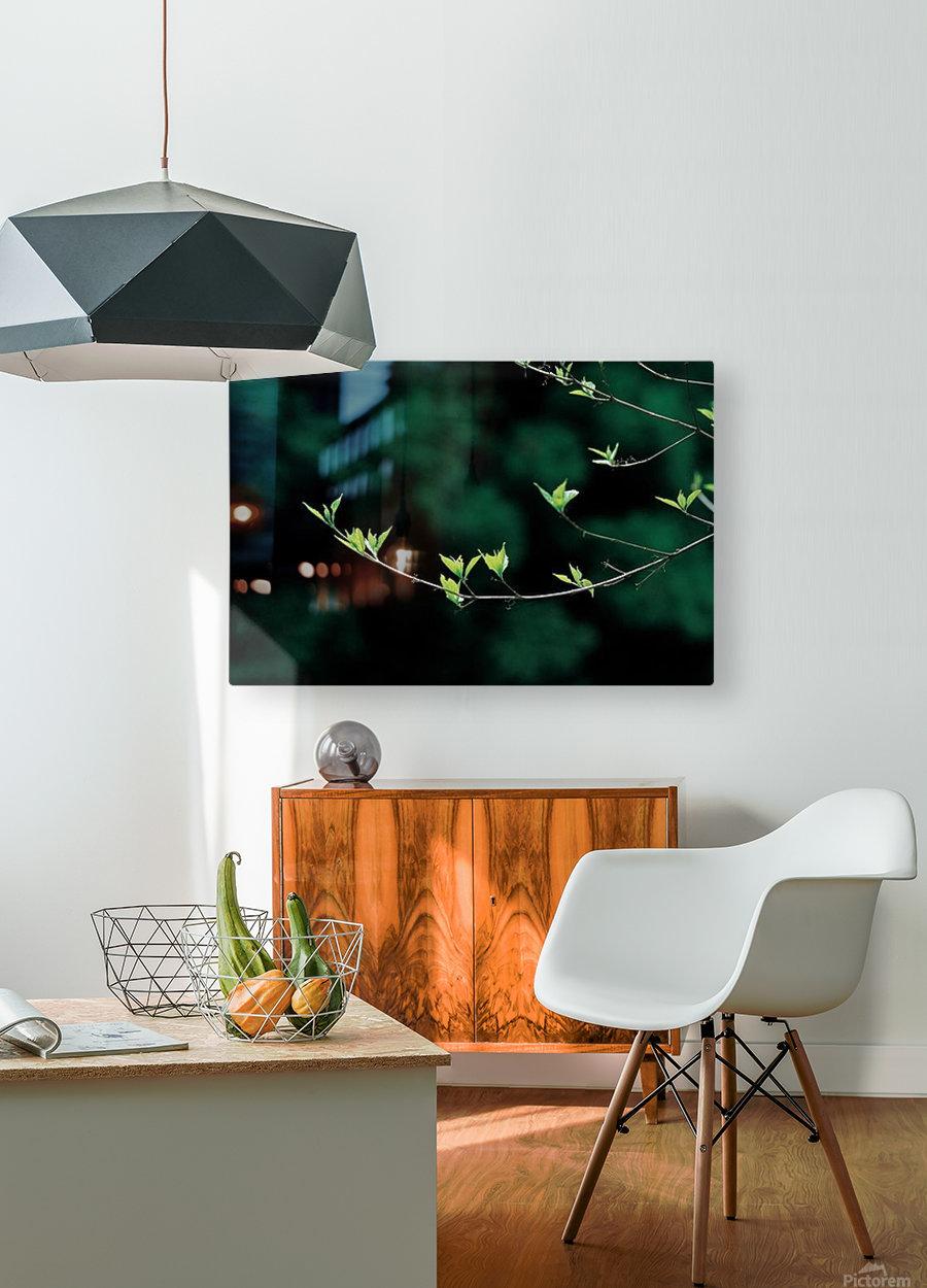landscape_2_0163  HD Metal print with Floating Frame on Back