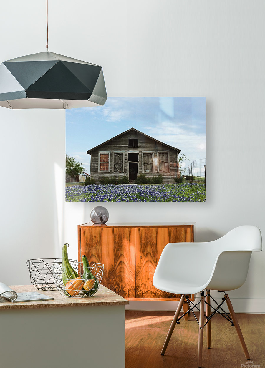 Blue Bonnet Shack  HD Metal print with Floating Frame on Back