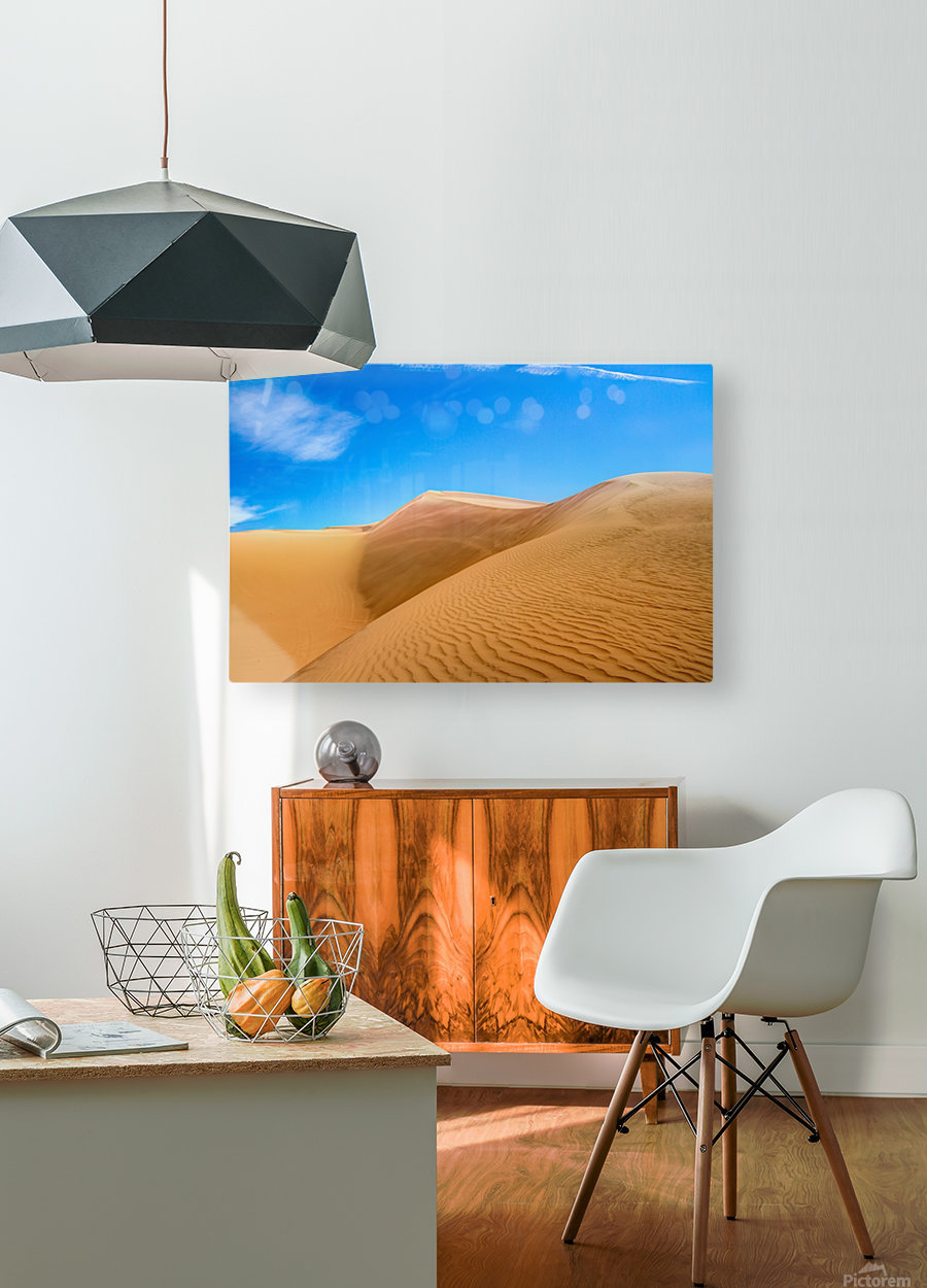 Windswept  HD Metal print with Floating Frame on Back