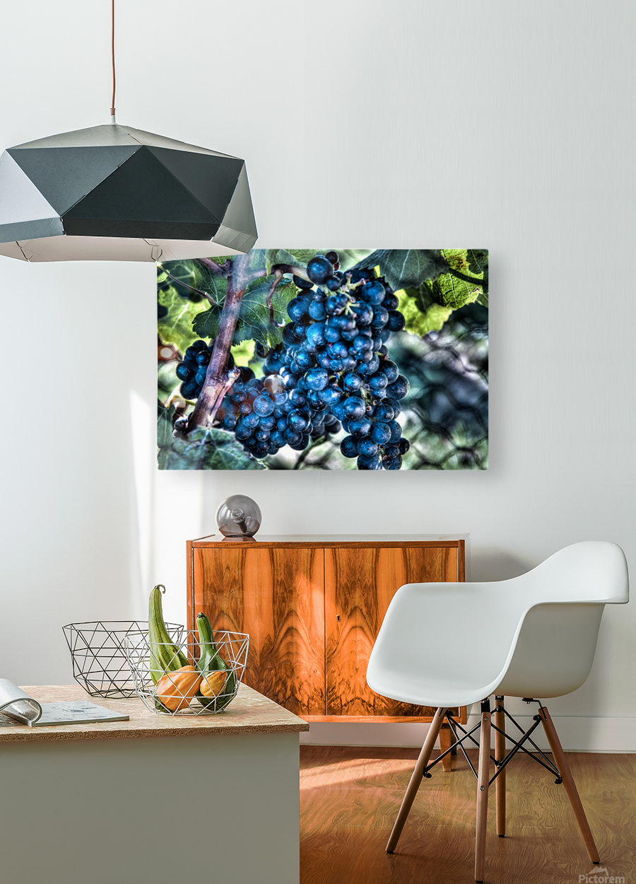 Bunches of Grapes  HD Metal print with Floating Frame on Back