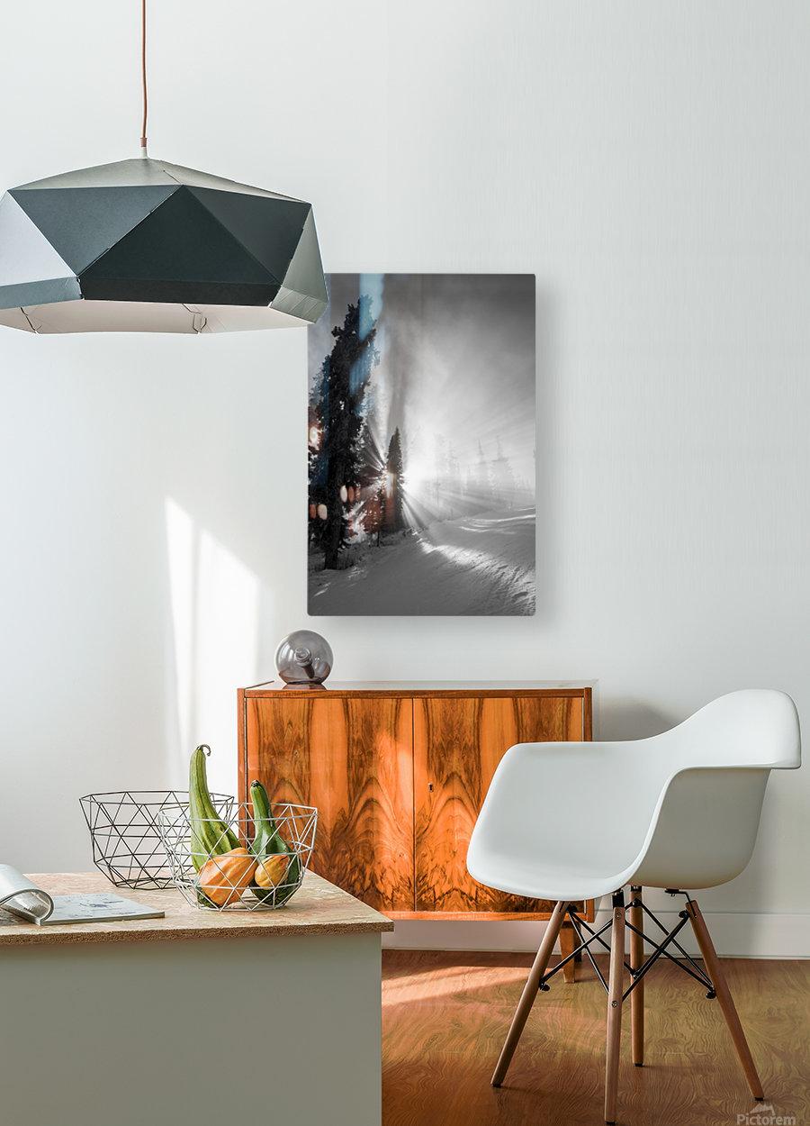 Frozen mist  HD Metal print with Floating Frame on Back