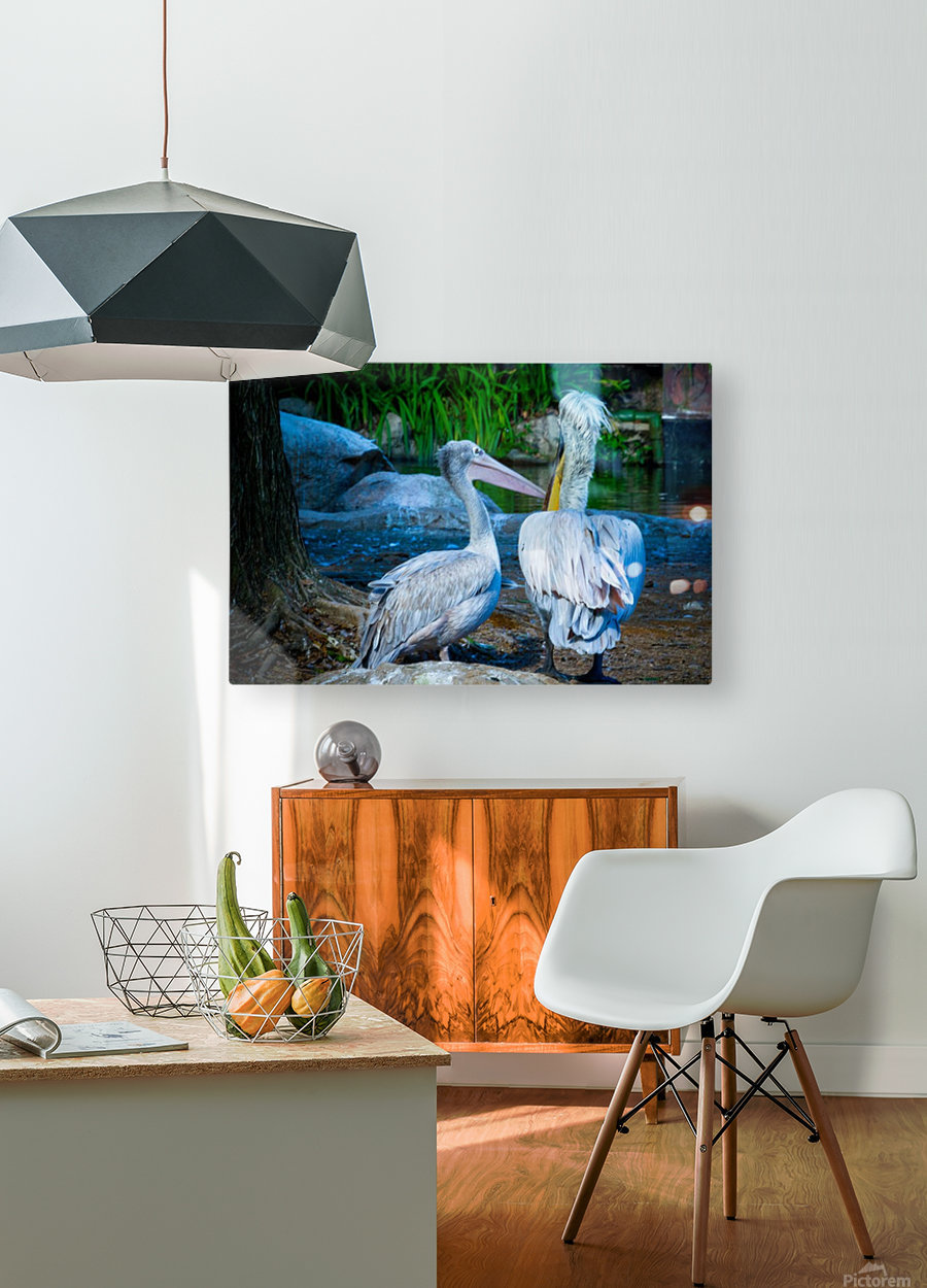 Nature and Birds   9  HD Metal print with Floating Frame on Back